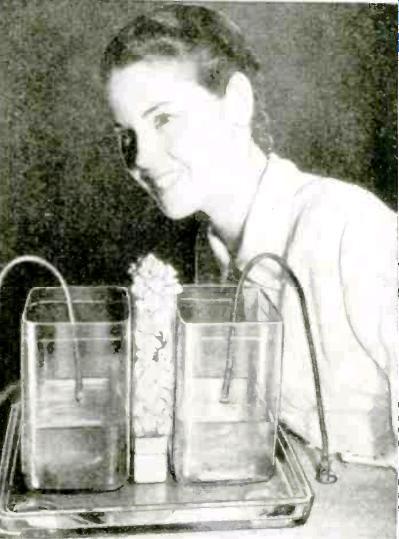 DiathermyPopcorn